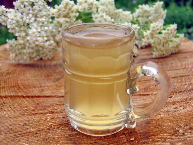 Рецепты березового кваса с медом