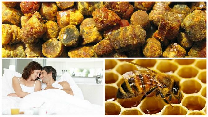 Пчелиный перга для беременных