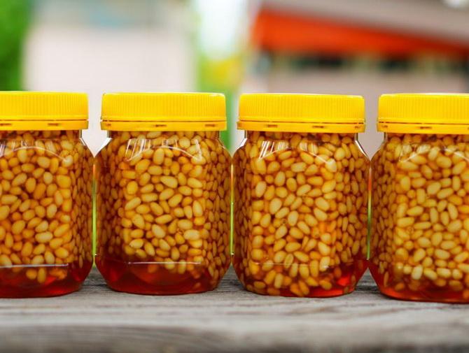 Кедровый мед: полезные свойства